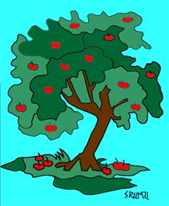 Apple-Tree.jpg