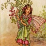 224-pink-and-green-flower-fairy-vintage-wall-art.jpg
