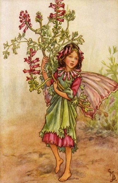 224 pink and green flower fairy vintage wall art