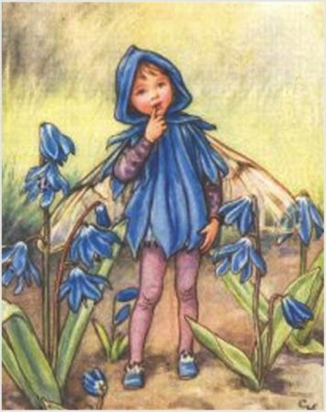 929 Vintage Flower Fairies114 blue bell fairy