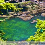 Cape Flattery Photography
